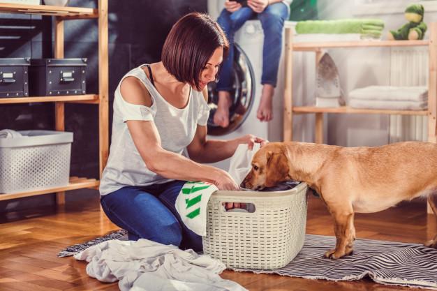 เครื่องซักผ้าพร้อมอบแห้ง ปั่นแห้ง