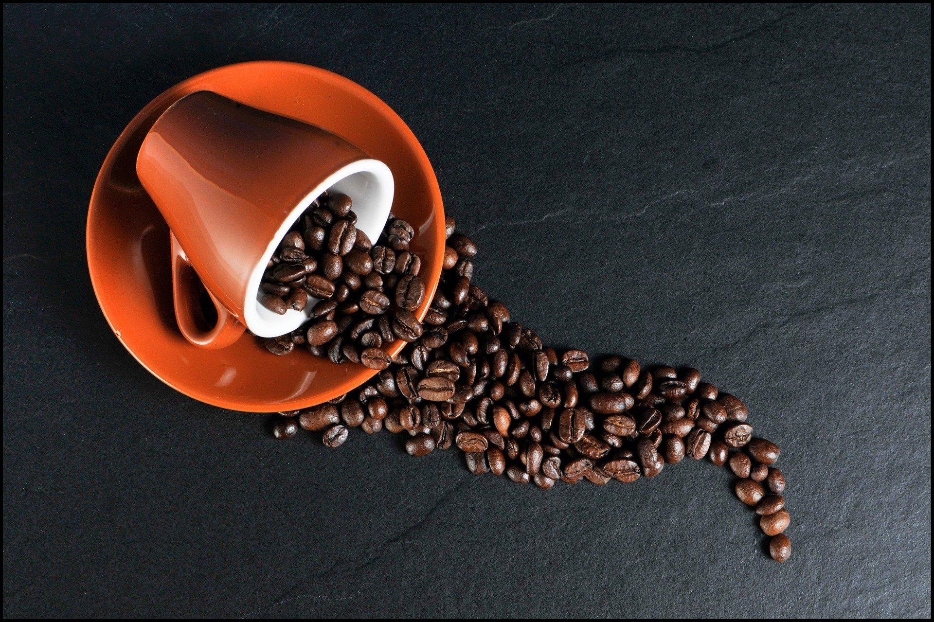 เครื่อง ชง กาแฟ พก พา